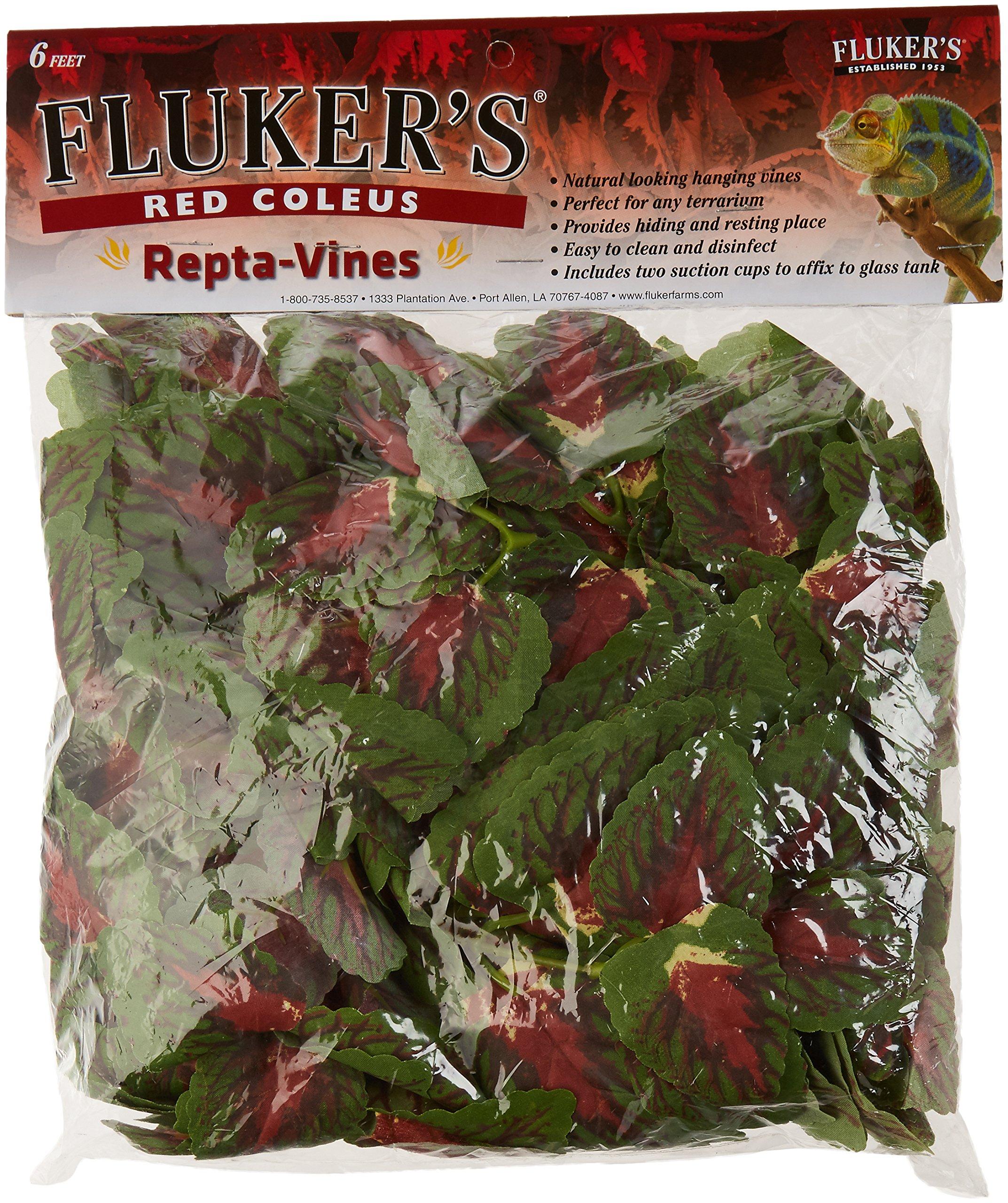 Fluker's 51017 Repta Vine Small Animal Hanging Vine, Red Coleus 2