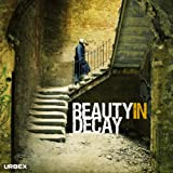 Beauty in Decay: Urbex: The Art of Urban Exploration