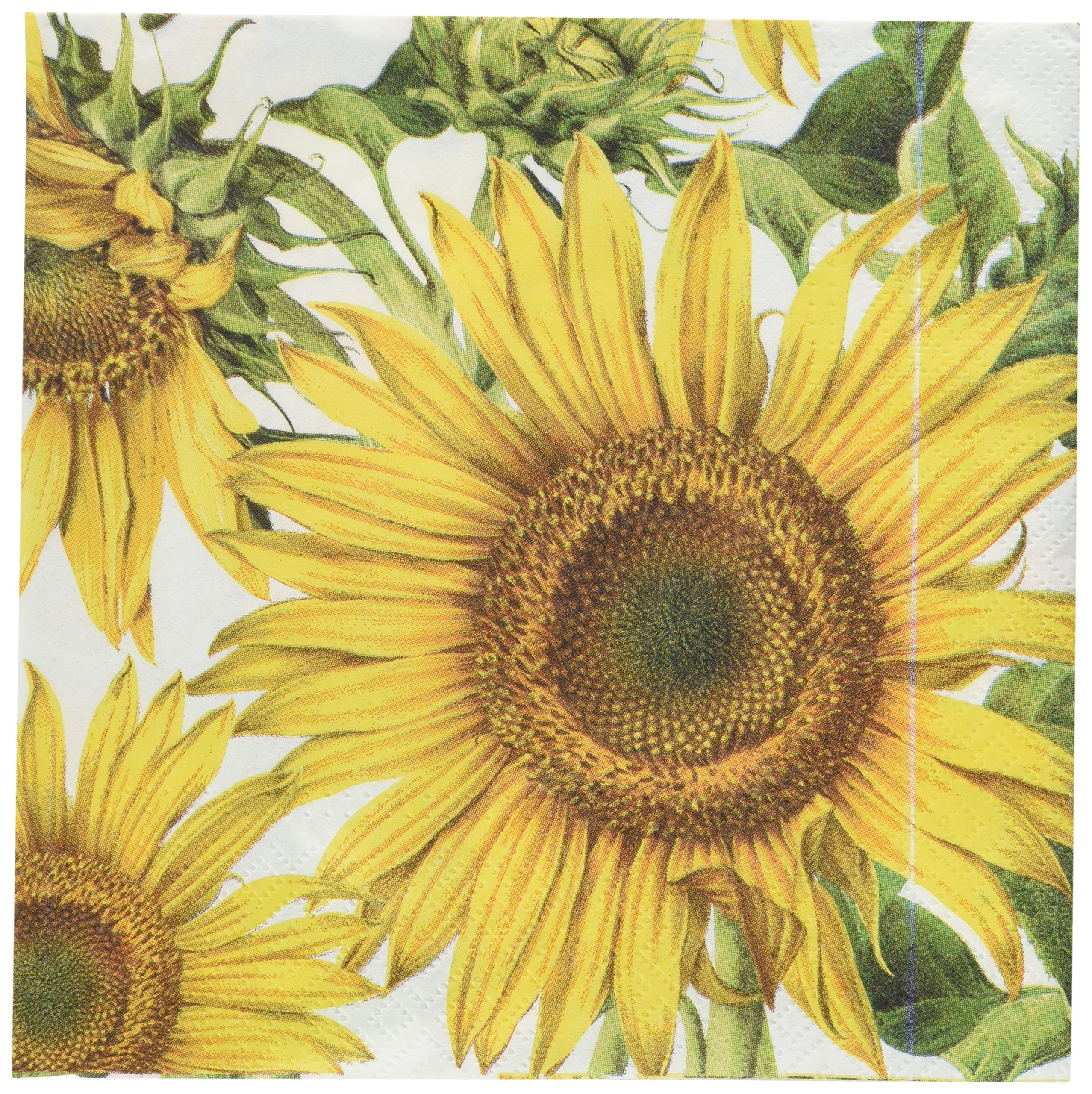Abbott Collection Jumbo Sunflower Paper Napkins, Large (20 pack)