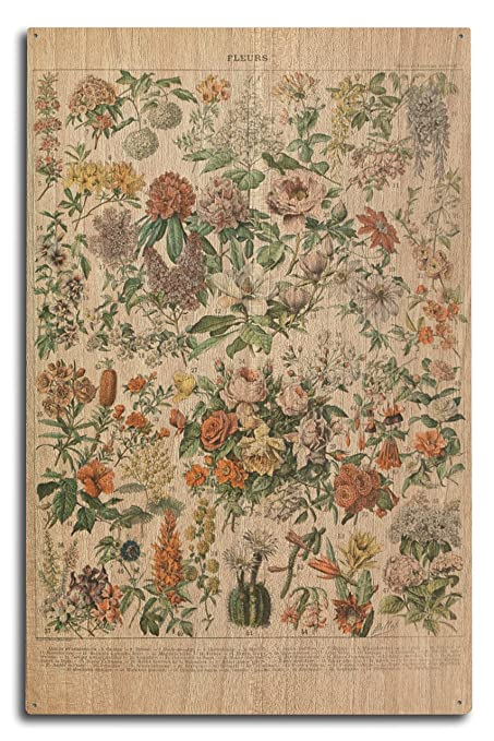 Varios Colores Flores C Vintage Ex Libris Adolphe Millot