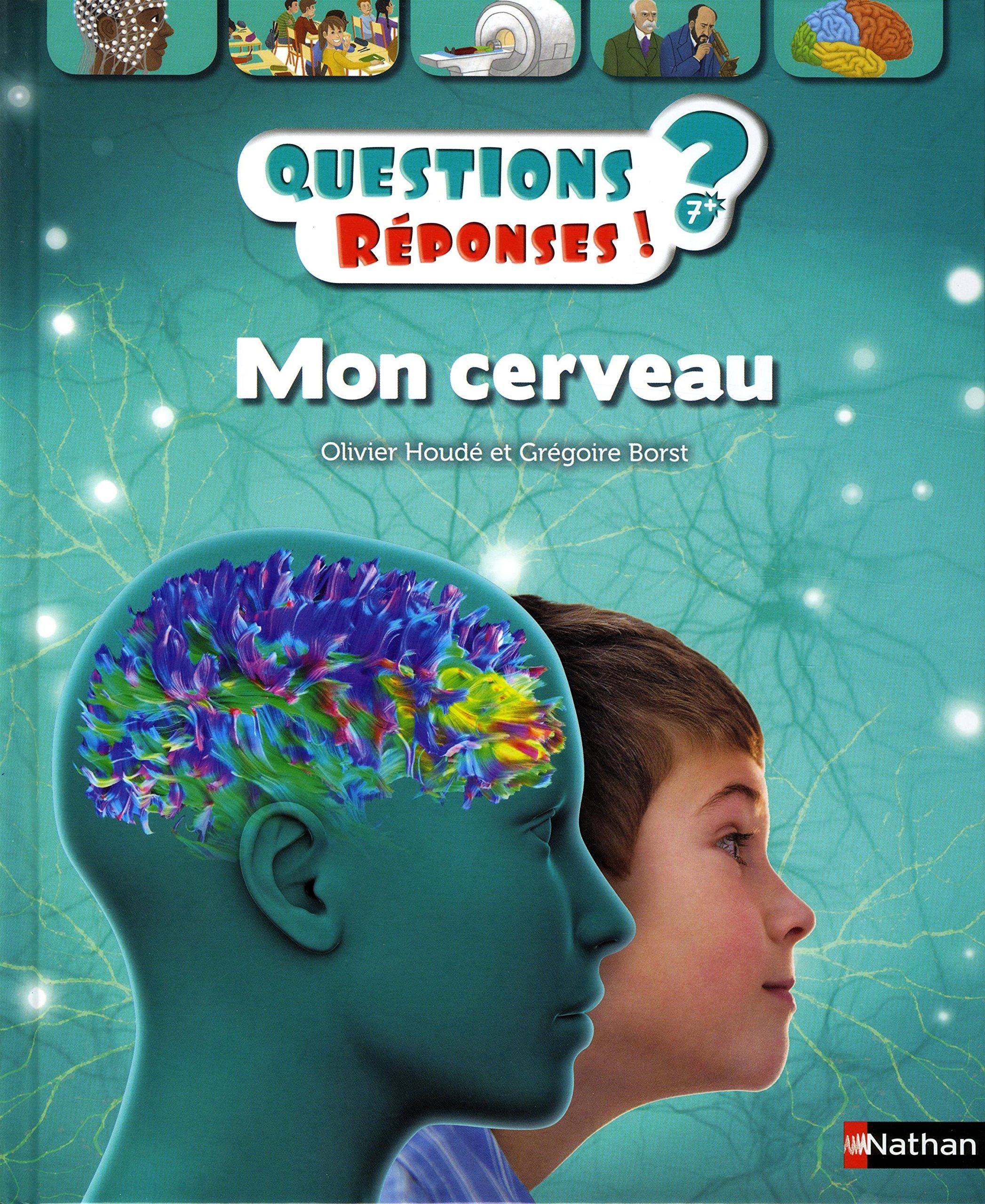 Mon cerveau - Questions/Réponses - les neurosciences dès 7 ans