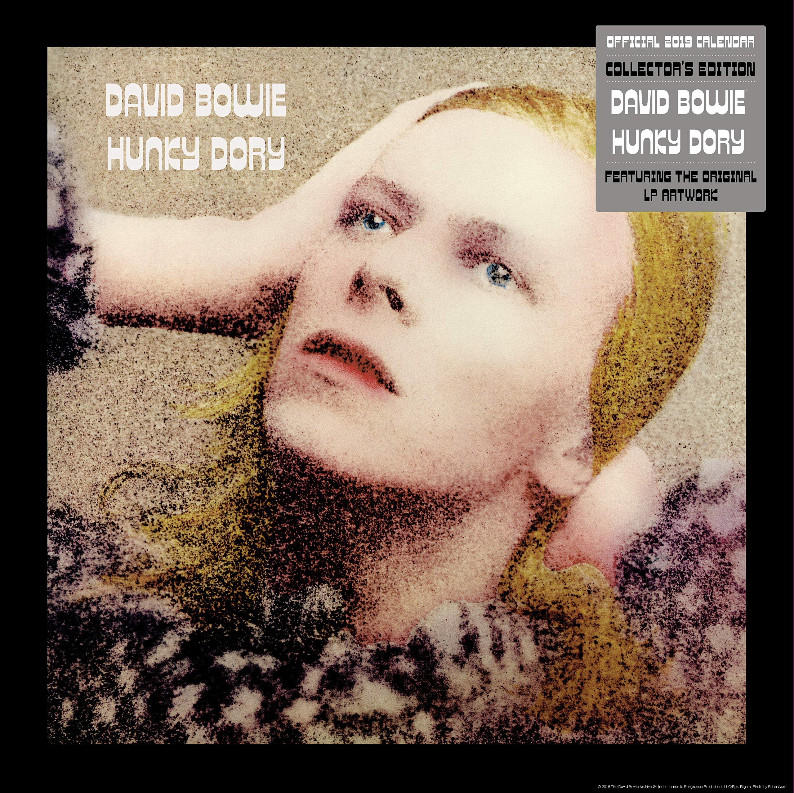 David Bowie Collectors Edition Official 2019 Calendar - Square Wall Calendar with Record Sleeve Cover Format Calendar – Wall Calendar, 15 Oct 2018 Danilo 1785495852 Music & Dance Address Books