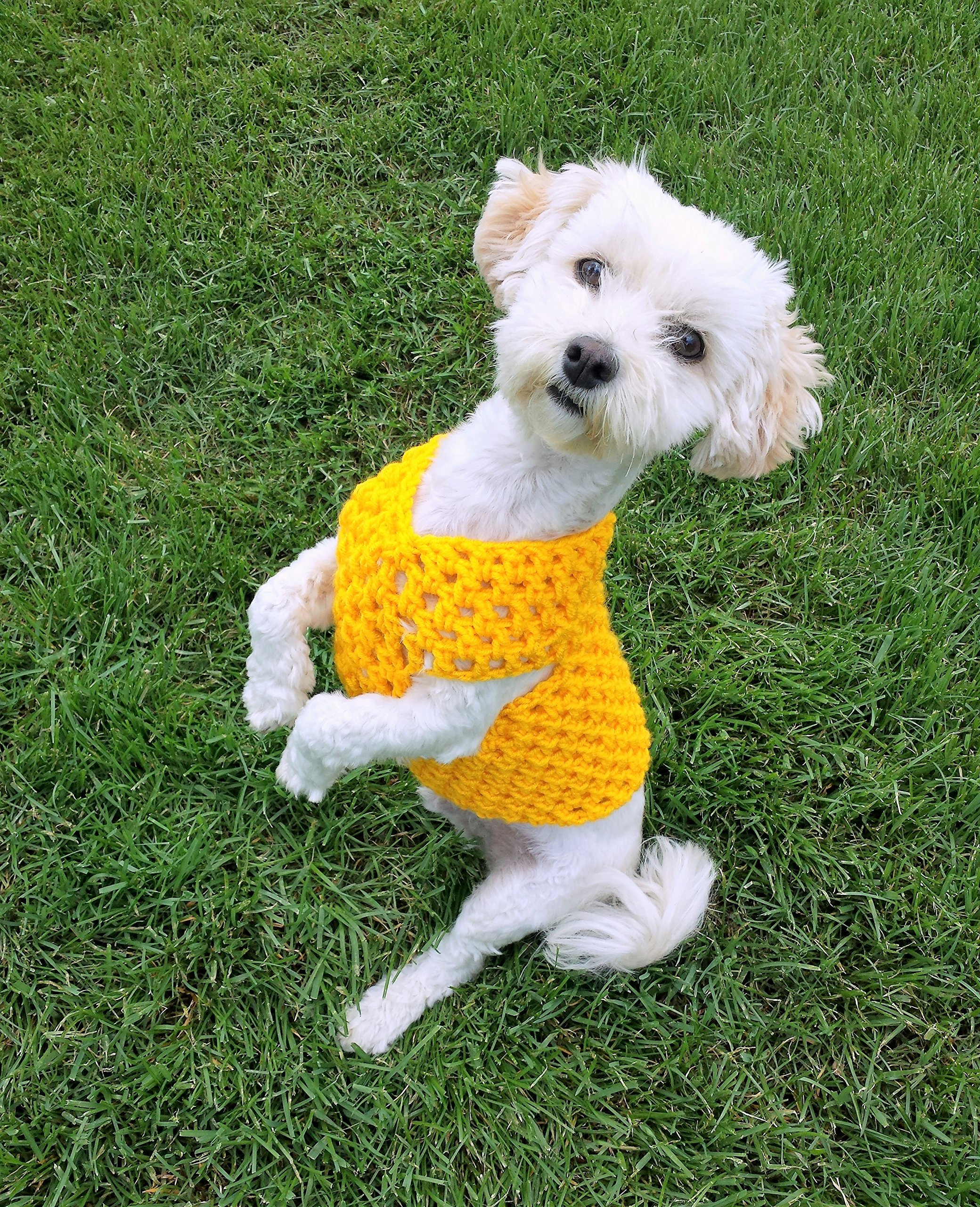 Yellow dog sweater, available in sizes XXS - L