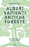 Alberi sapienti, antiche foreste: Come guardare, ascoltare e avere cura del bosco