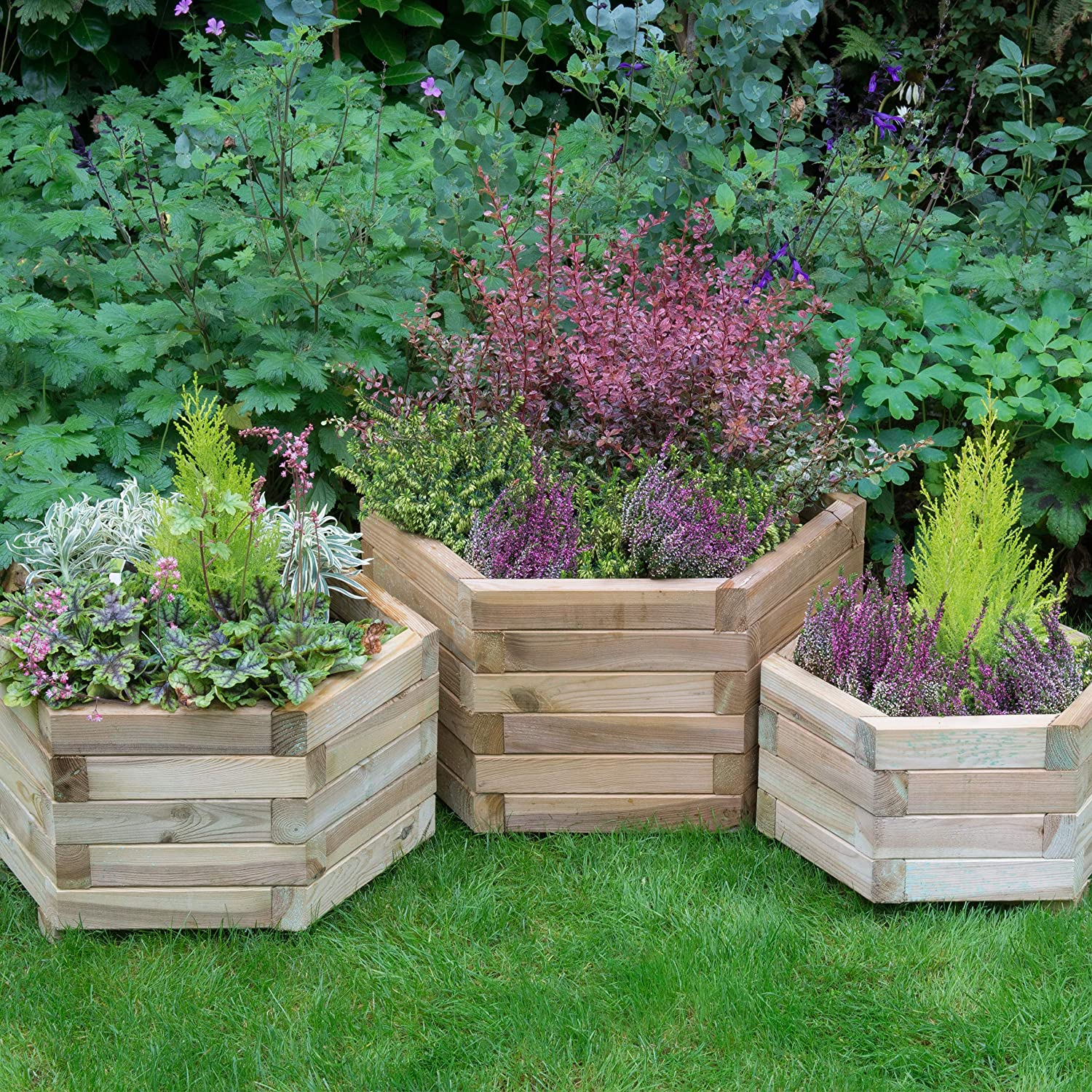 Forest Kendal Square Planter Set 3 in 1