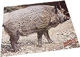 Lovoski 狩猟 ハンティング アーチェリー アルミ スタビライザー 振動低減 全3色3サイズ - ブラック, 11インチ