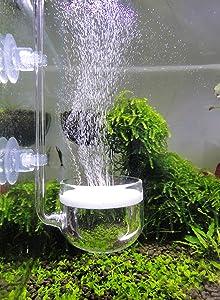 JARDLI Music Glass CO2 Diffuser for Aquarium Plant