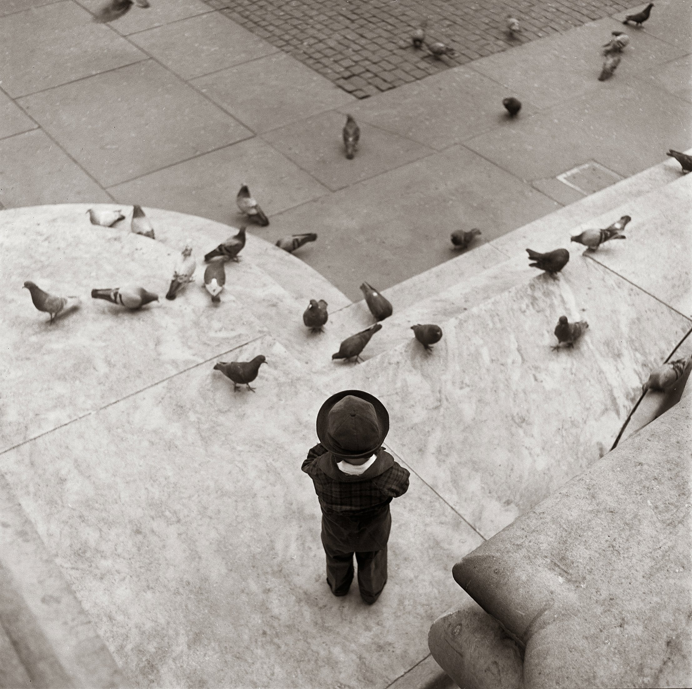 Boy and Pigeons, New York Public Library