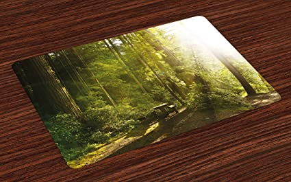 Lunarable Nature Place Mats Set Of 4, Sunny Rainforest With Wood Bench In  Olympic National