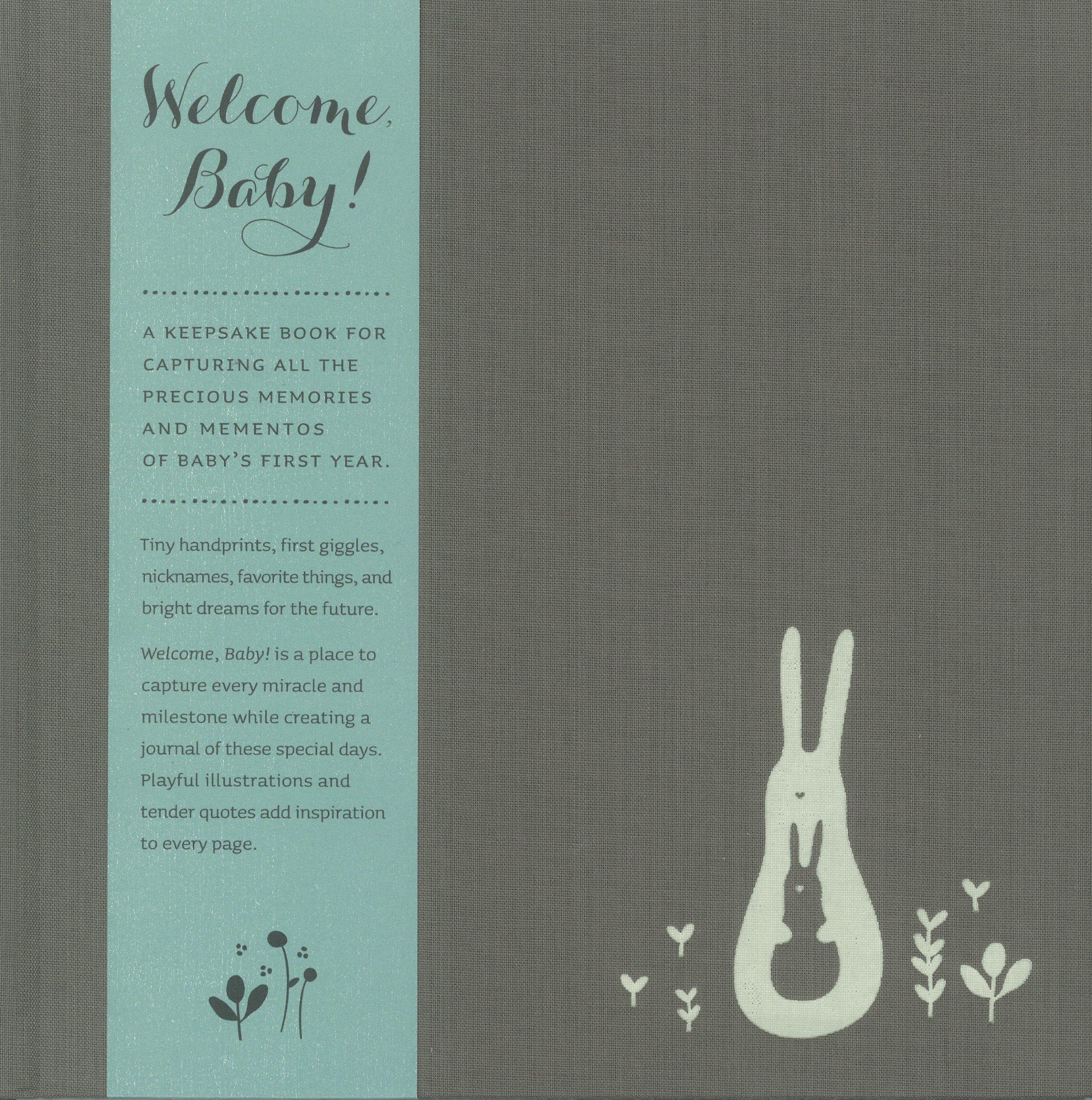 Welcome Baby Aqua Bellyband Edition Dan Zadra 9781935414643