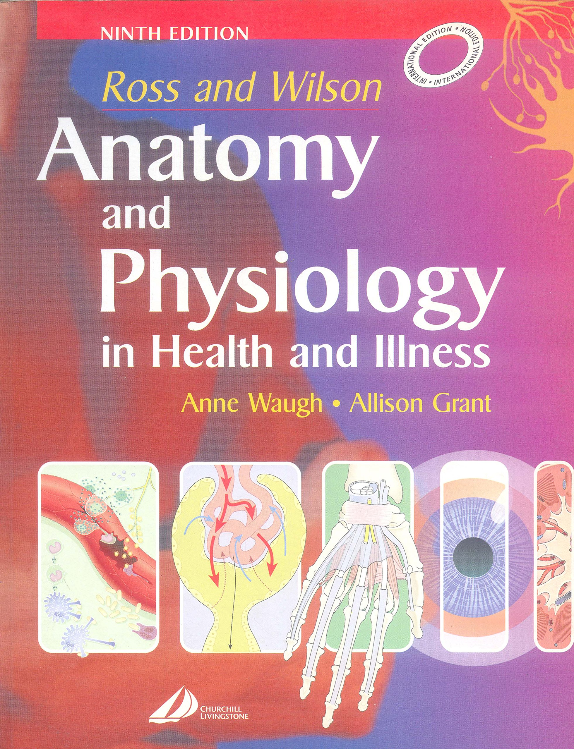 Amazon.in: Buy Ross & Wilson Anatomy Physiology In Helth & Illness ...