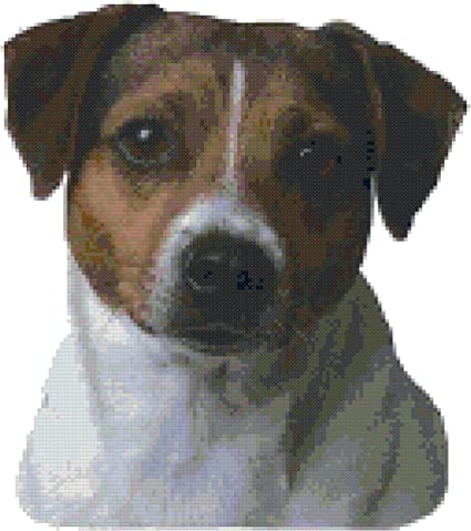 Ravelry: AmiDogs Jack Russell Terrier pattern by June Gilbank | 479x425