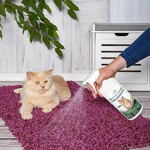Neutralizadores de olor spray para gatos -natural removedor de la orina del gato-contra el olor de la caja de arena - Ecosharkz for Cats (50 ml de ...