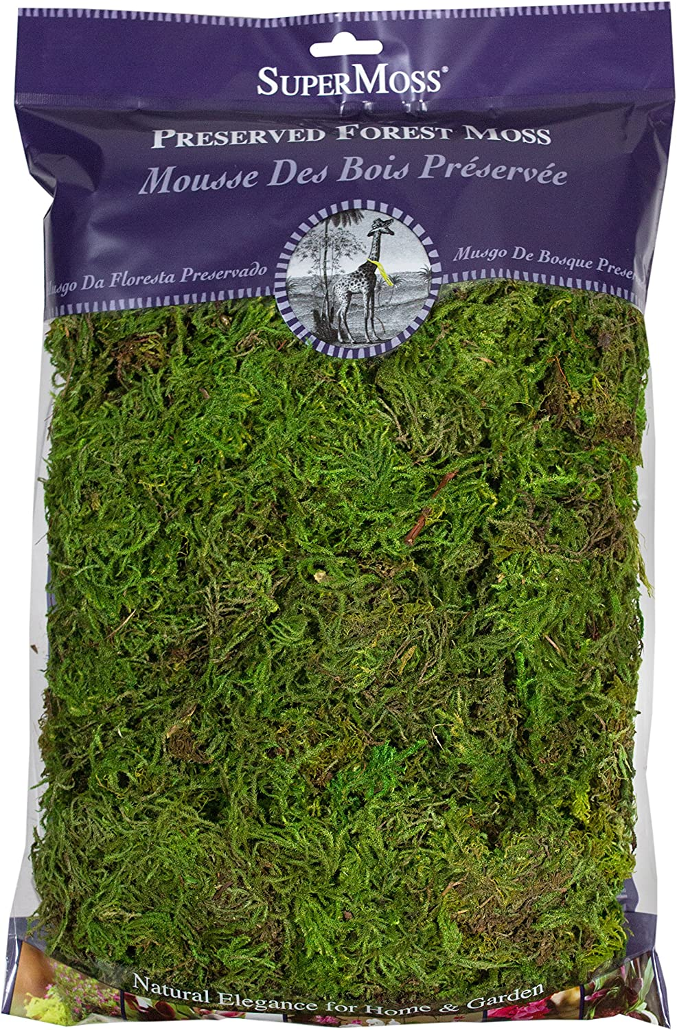 Fresh Green Forest Moss Preserved SuperMoss 8oz 25322