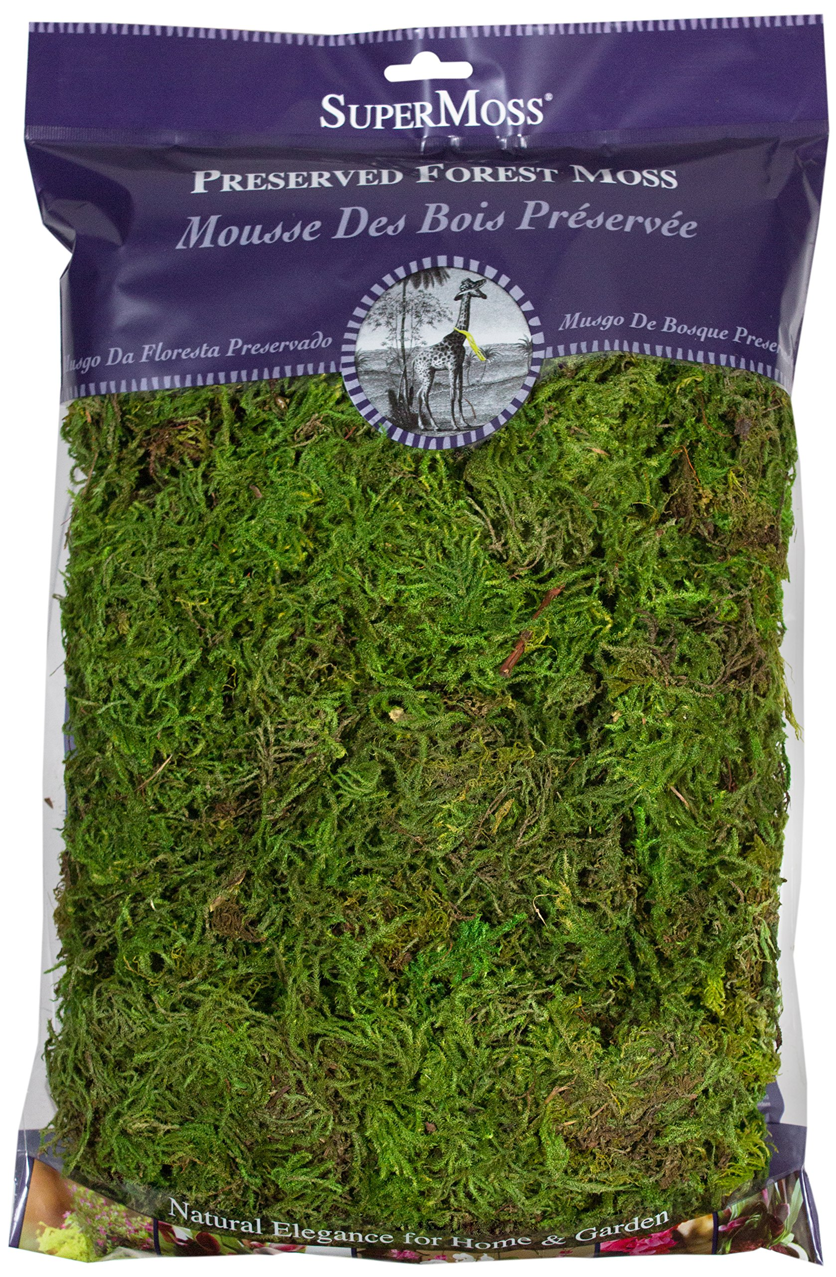 Super Moss (25322) Forest Moss Preserved, Fresh Green, 8oz
