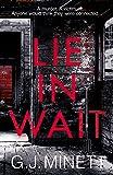 Lie in Wait: A dark and gripping crime thriller