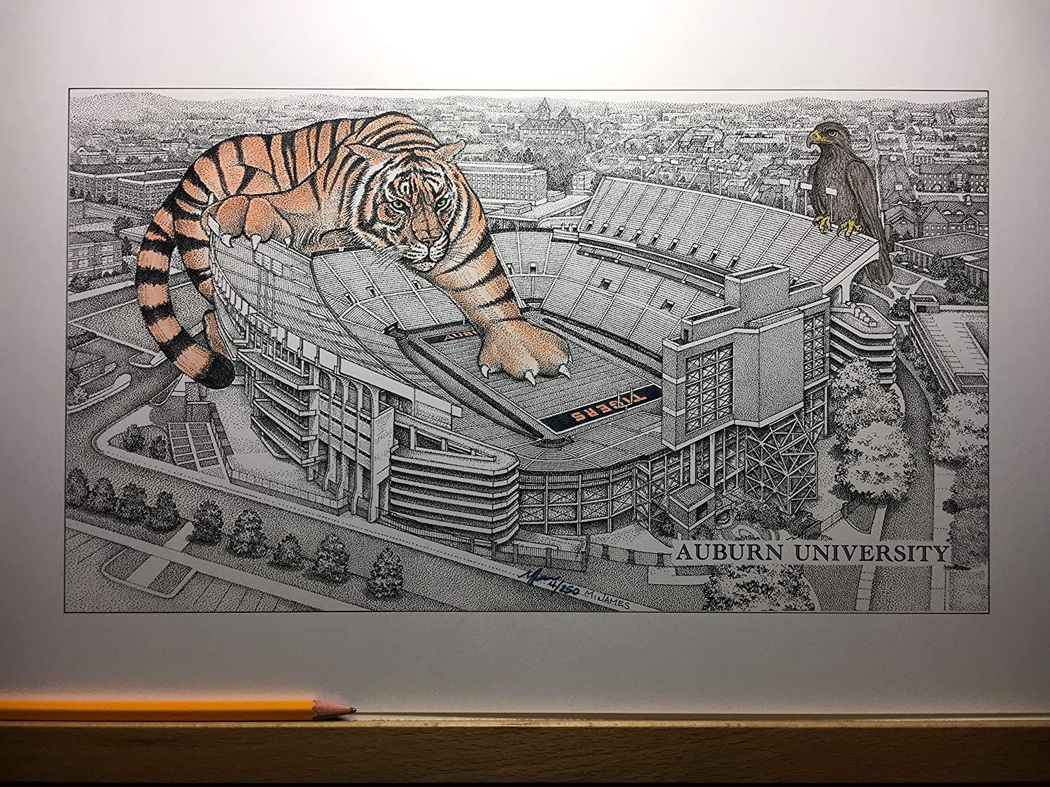 Auburn football stadium with hand-colored tiger -11'x17' pen & ink drawing