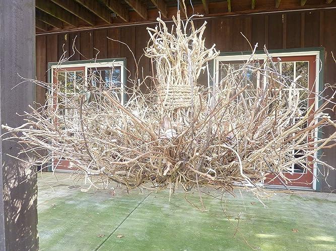 Amazon rustic twig chandelier branch chandelier honeysuckle rustic twig chandelier branch chandelier honeysuckle vine chandelier grapevine chandelier twig lighting mozeypictures Images