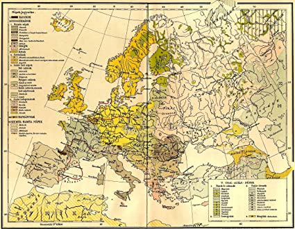 Amazon.com: Home Comforts Framed Art Your Wall Map Europe Ethnic map ...