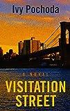Visitation Street (Thorndike Press Large Print Basic)