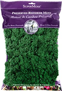 SuperMoss (21757) Reindeer Moss Preserved, Forest, 8oz (200 cubic inch)