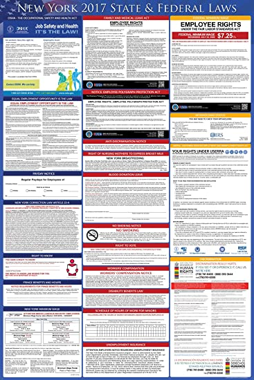 Amazon 2017 new york federal and state labor law posters 2017 new york federal and state labor law posters uv protected 24quot sciox Images