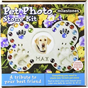 Midwest Products Pet Photo Stepping Stone Kit