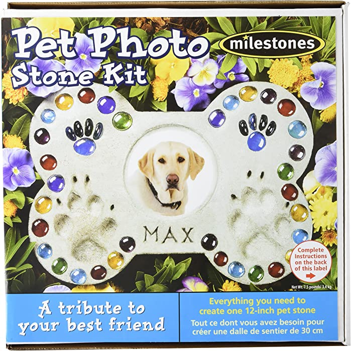 The Best Garden Stepping Stones For Dog Prints
