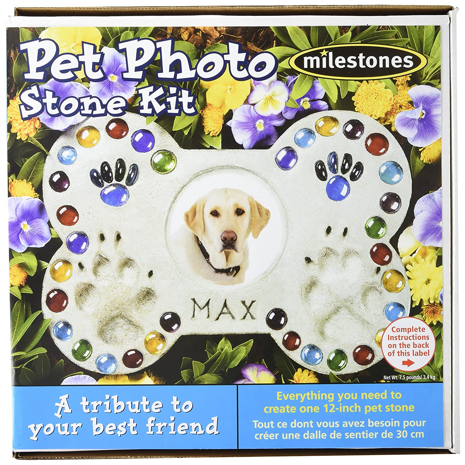 Midwest Products Pet Photo Stepping Stone Kit 90111296
