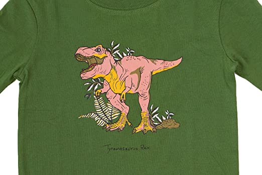 Amazon.com: Green 2 Piece Kids Footed Pajamas Jurassic Dinosaurs Footie Pajamas: Clothing