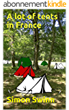 A lot of tents in France (A tent in France Book 2) (English Edition)