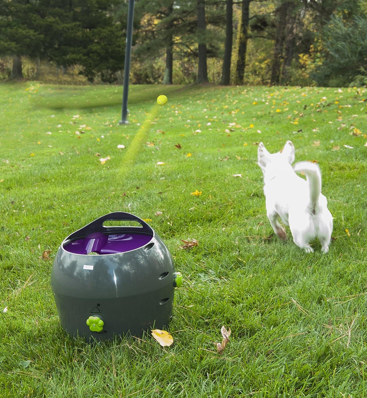 PetSafe Automatic Ball Launcher Dog Toy