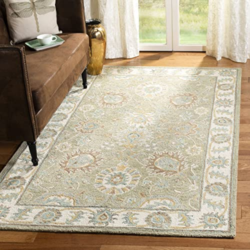 Safavieh Blossom Collection BLM702W Handmade Wool Area Rug