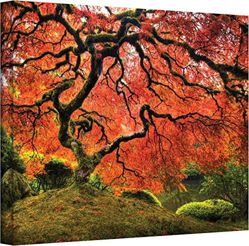 Art Walls Japanese Tree Gallery Wrapped Canva