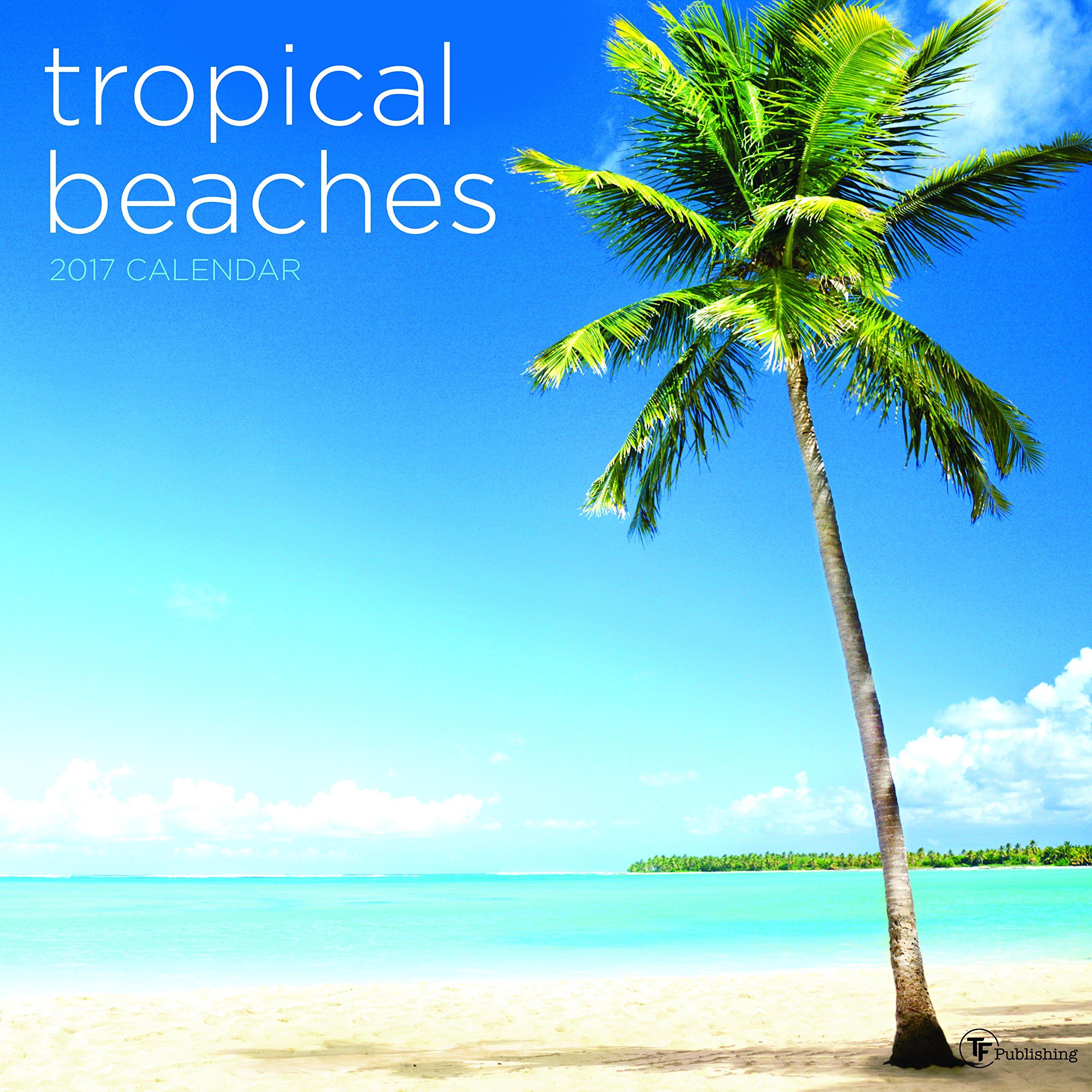 Tropical Beaches: Pics Of Tropical Beaches