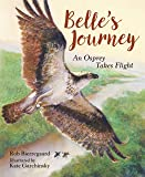 Belle's Journey: An Osprey Takes Flight