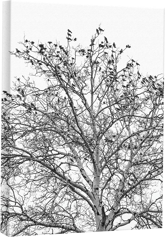 JP London CNV2232 Black White Tree Branches Ravens Canvas Art Wall Decor, 2' x 1.5'