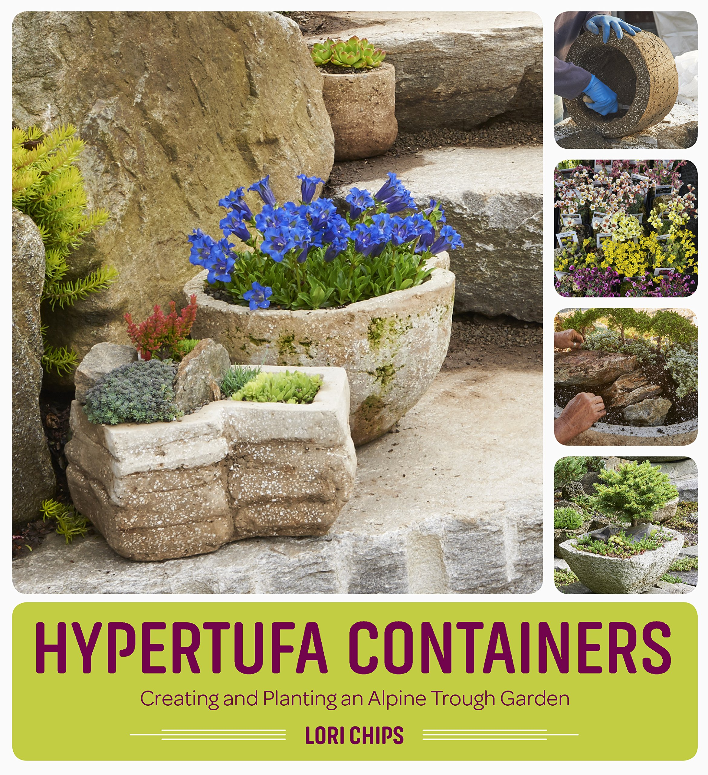 Hypertufa Containers: Creating And Planting An Alpine Trough Garden: Lori  Chips: 9781604697063: Amazon.com: Books