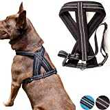 Zenify Pets Dog Harness - Chest Vest Cross Adjustable Reflective for Puppy Small Dogs (Black, Small)