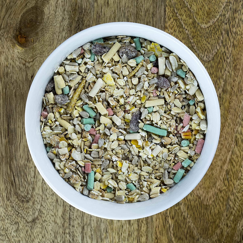 5//% des Verkaufserl/öses Werden An 1TreePlanted Gespendet Seedzbox Vogelfuttermischung