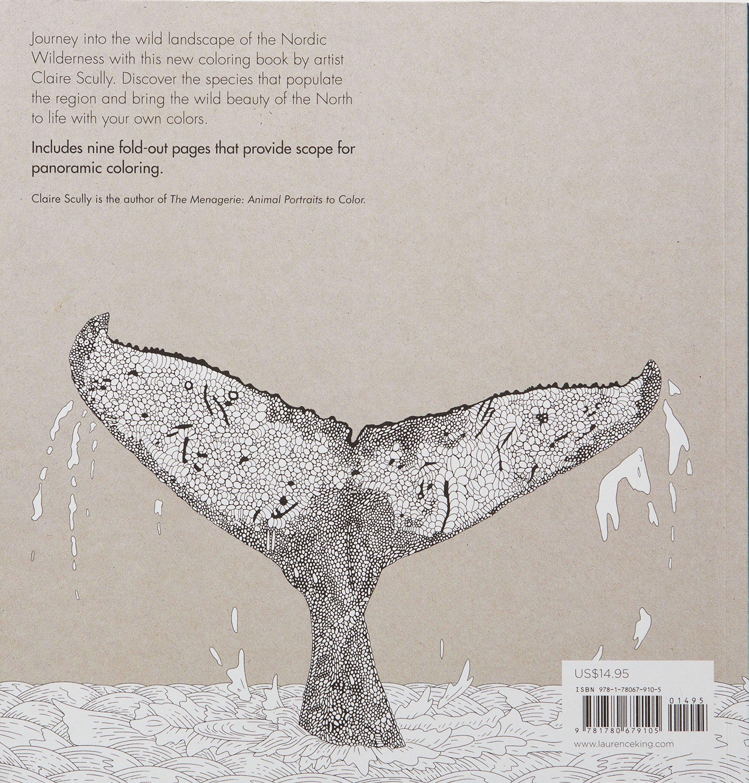 Amazon: Nordic Wilderness: A Coloring Book (9781780679105): Claire  Scully: Books