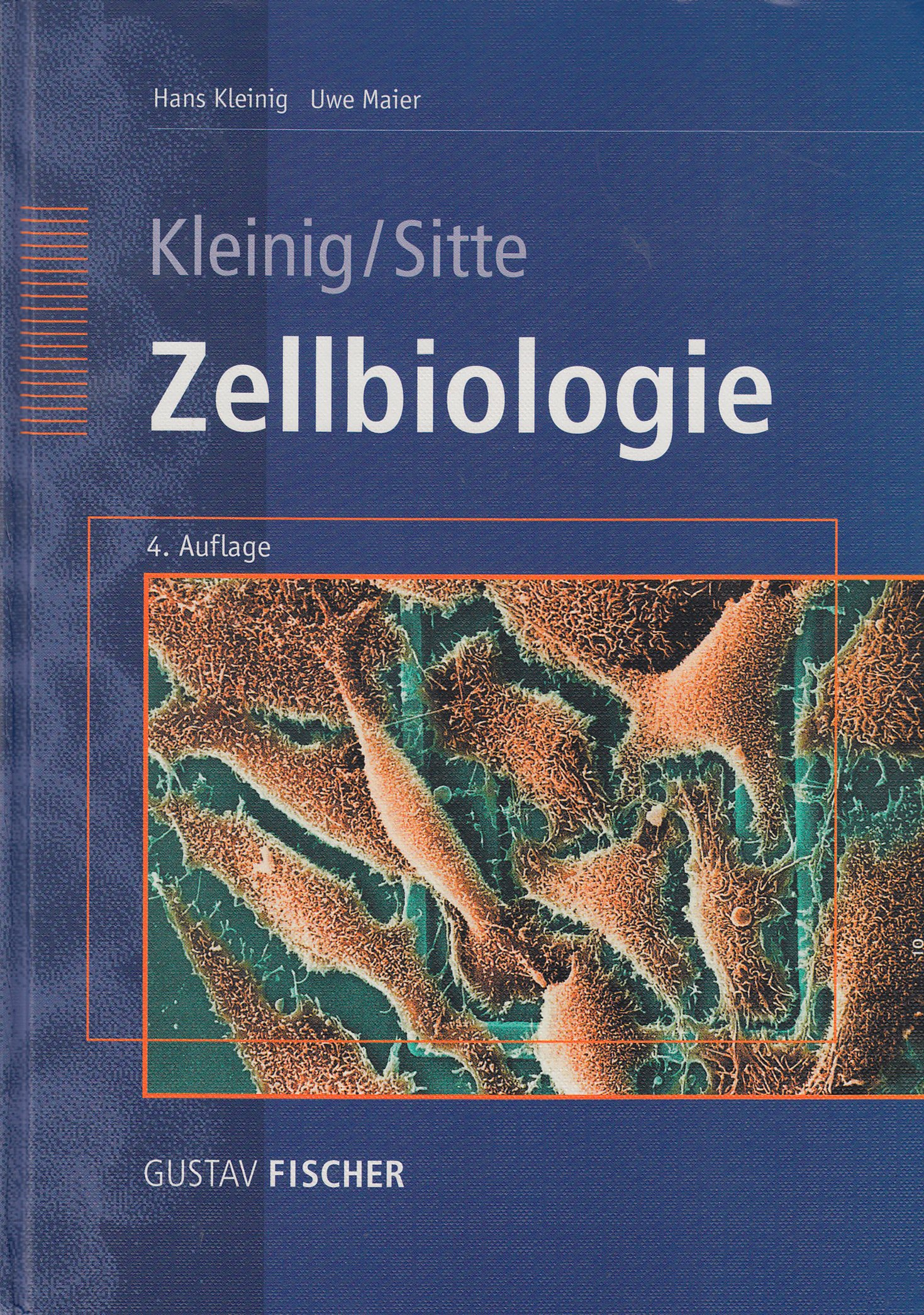 Zellbiologie: Begründet von Hans Kleinig und Peter Sitte