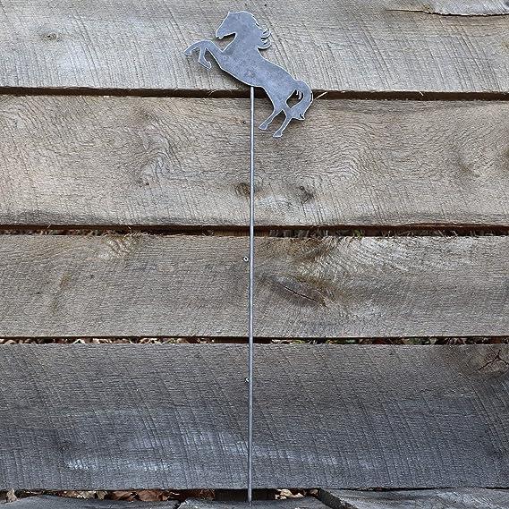 Amazon.com: Estaca de metal para jardín, decoración de ...
