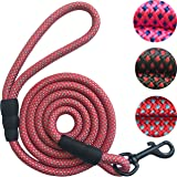 Sturdy Nylon Dog Leash for Cats Small Medium Large Dogs - Durable and Thick Nylon Rope - 5 or 6 Feet Long - BUY 2, GET ADDITIONAL 10% OFF - Limited Time Offer - Today ONLY