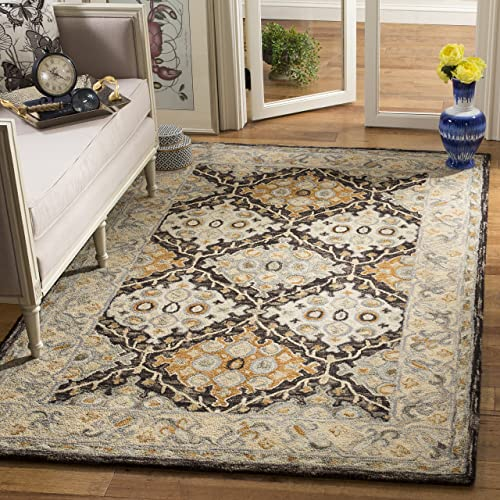 Safavieh Aspen Collection APN304A Beige and Brown Premium Wool Area Rug 9' x 12'