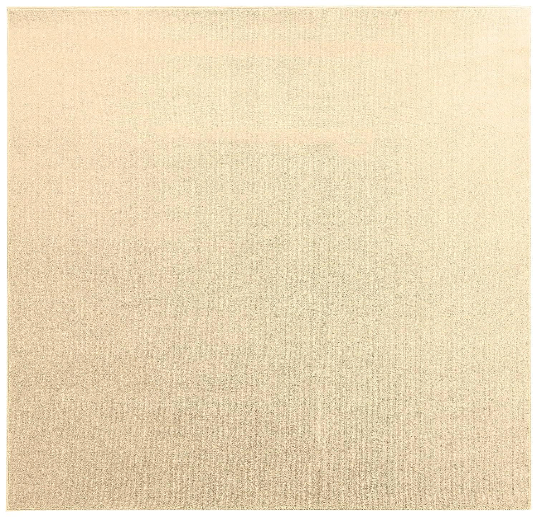 オーダーラグ ポリエステルソフトプレーン ベージュ 幅295cm 長さ240cm アレルブロック 防音 B01J1VJ6R6  240 センチメートル