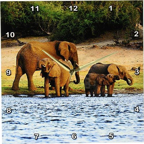 3dRose DPP_131440_2 African Elephant, Chobe National Park, Botswana Af05 Mgl0003 Miva Stock Wall Clock, 13 by 13-Inch