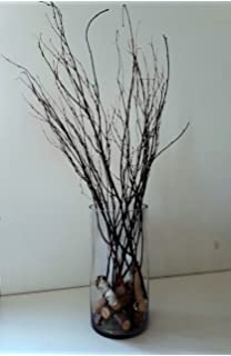 Amazon.com: tall birch branches for vases, decorative branches for ...