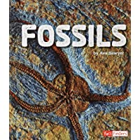Fossils (Fact Finders: Rocks)