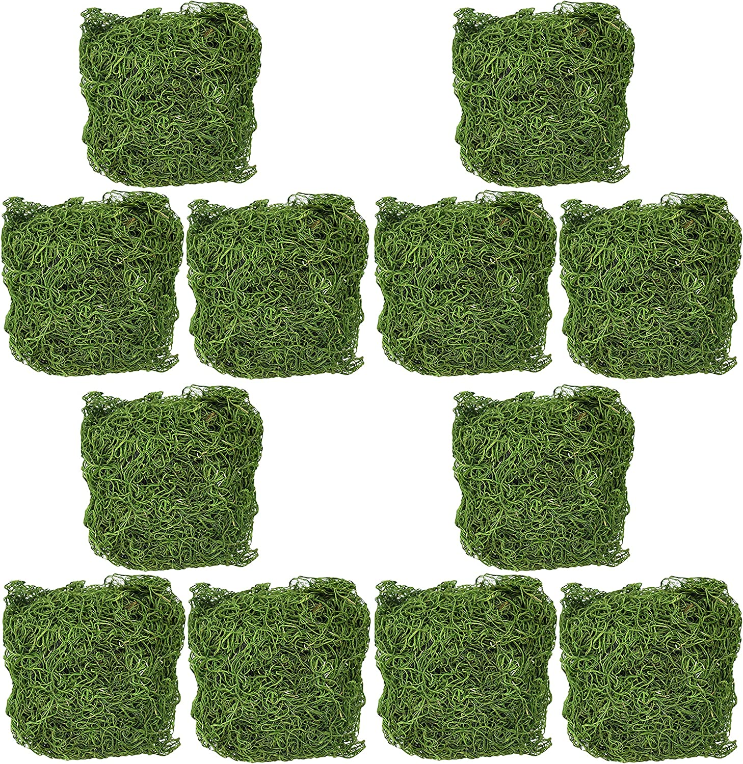 and More! Set of 1500 Cubic Inches of Dyed Green Spanish Moss Great for Decorating Flower Pots Decorative Enhancements Wreaths